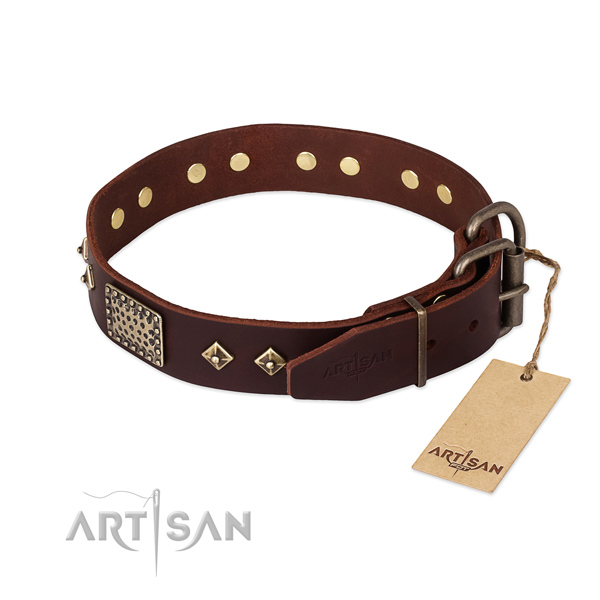 Leather dog collar with rust-proof D-ring and embellishments