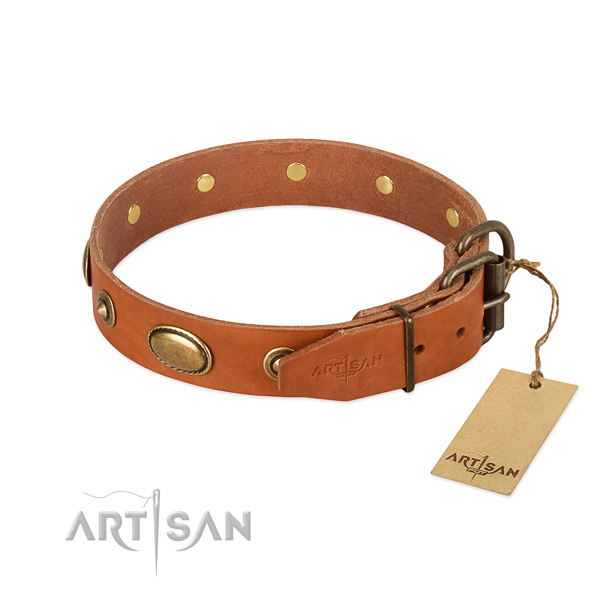 Strong decorations on leather dog collar for your canine
