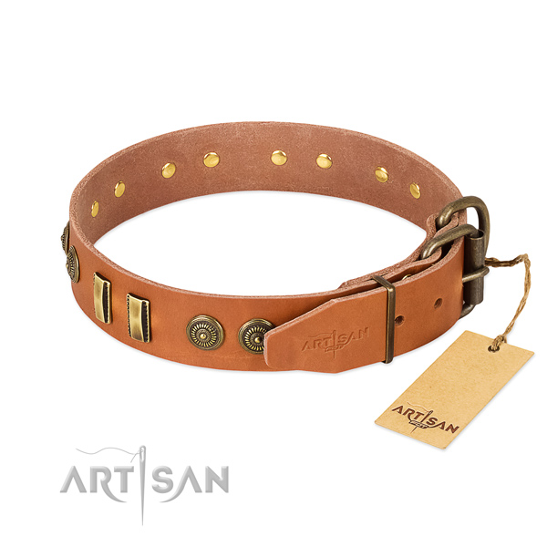 Corrosion resistant traditional buckle on full grain natural leather dog collar for your pet