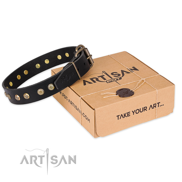 Corrosion resistant buckle on leather collar for your handsome pet