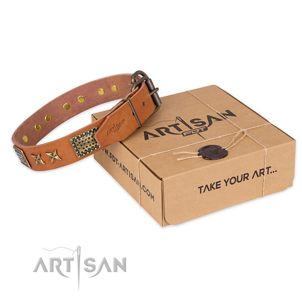Durable buckle on full grain leather collar for your stylish dog