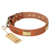 """Enchanting Spectacle"" FDT Artisan Tan Leather Sharpei Collar with Old Bronze Look Plates and Round Studs"