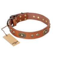"""Stunning Dress"" FDT Artisan Tan Leather Sharpei Collar with Old Bronze Look Plates and Studs"