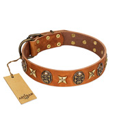 """Rockin' Doggie"" FDT Artisan Tan Leather Sharpei Collar Adorned with Stars and Skulls"