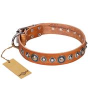 """Daily Chic"" FDT Artisan Tan Leather Sharpei Collar with Decorations"
