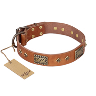 """Catchy Look"" FDT Artisan Decorated Tan Leather Sharpei Collar"