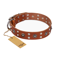 """Silver Elegance"" FDT Artisan Decorated Leather Sharpei Collar with Old Silver-Like Plated Studs and Cones"