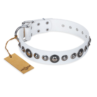 """Ice Age"" FDT Artisan White Studded Leather Sharpei Collar"