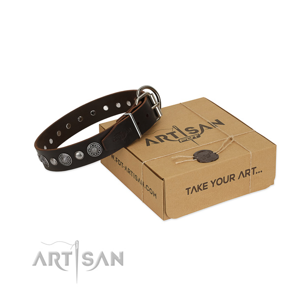Strong full grain leather dog collar with designer adornments