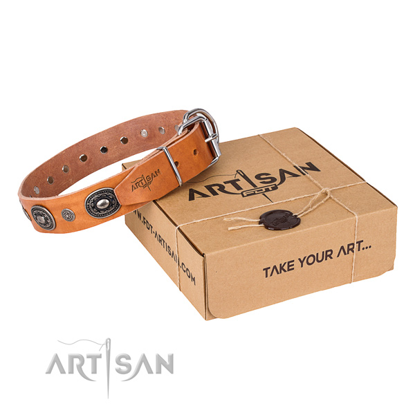 Flexible full grain natural leather dog collar handcrafted for stylish walking