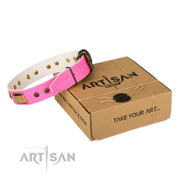 Incredible natural genuine leather collar for your attractive doggie