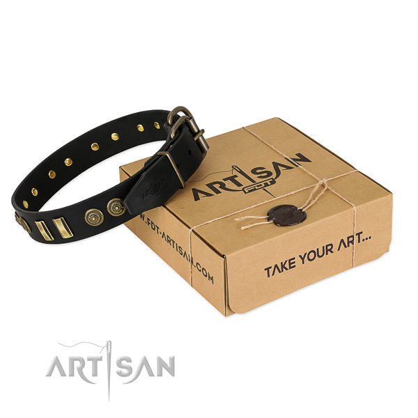 Rust-proof studs on natural leather dog collar for your pet