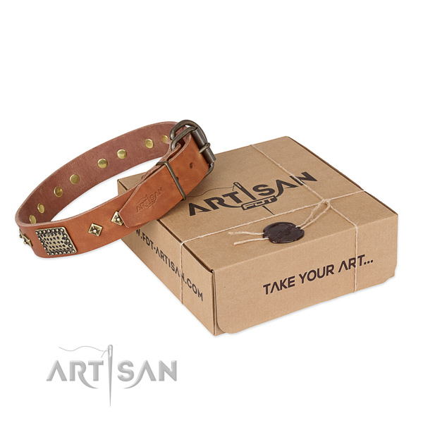 Fine quality full grain natural leather collar for your attractive dog
