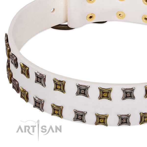 Full grain natural leather dog collar with decorations for your beautiful pet