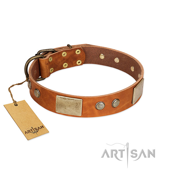 Easy to adjust leather dog collar for stylish walking your doggie