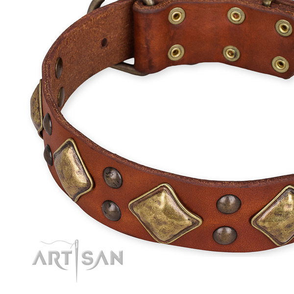 Full grain leather collar with rust resistant traditional buckle for your impressive canine