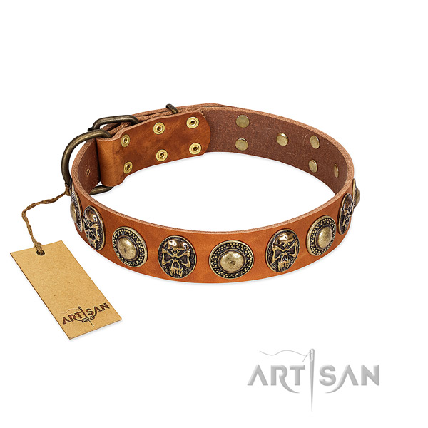 Adjustable genuine leather dog collar for stylish walking your doggie
