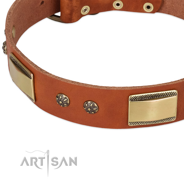 Durable adornments on full grain natural leather dog collar for your pet