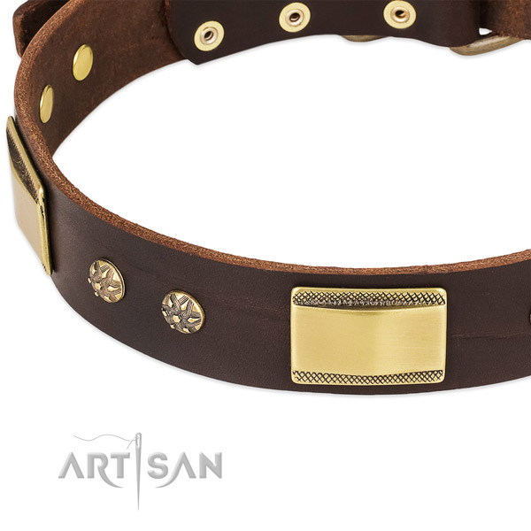 Corrosion proof adornments on full grain genuine leather dog collar for your four-legged friend
