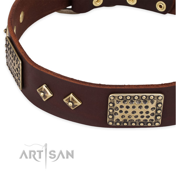 Strong buckle on full grain natural leather dog collar for your canine