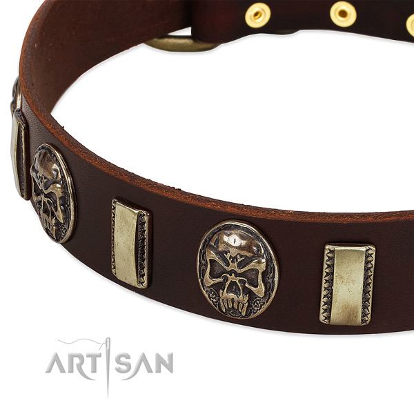 Corrosion resistant decorations on full grain leather dog collar for your dog