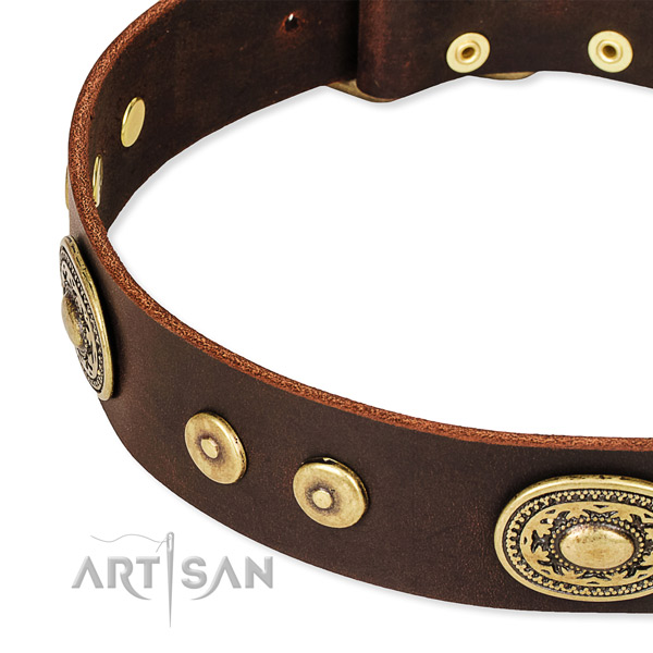 Adorned dog collar made of top rate leather