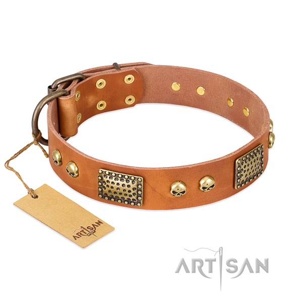 Adjustable full grain natural leather dog collar for daily walking your pet
