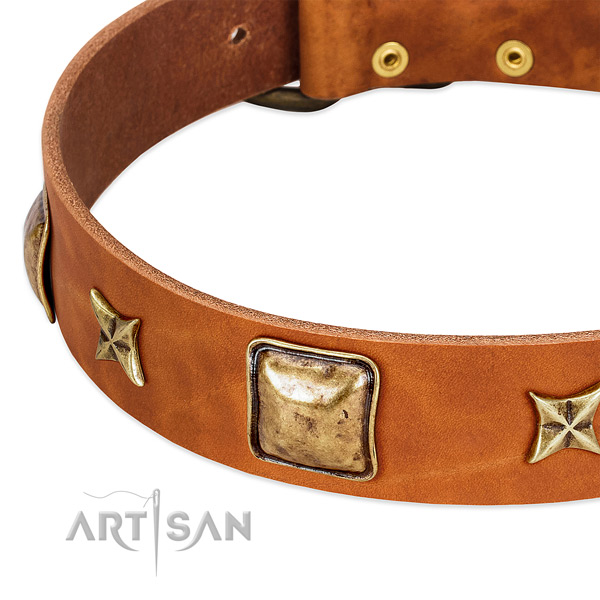 Reliable hardware on genuine leather dog collar for your doggie