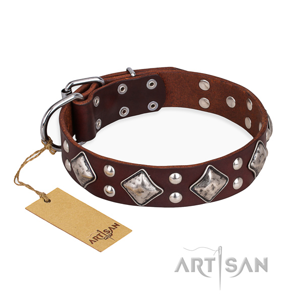 Walking adorned dog collar with strong D-ring
