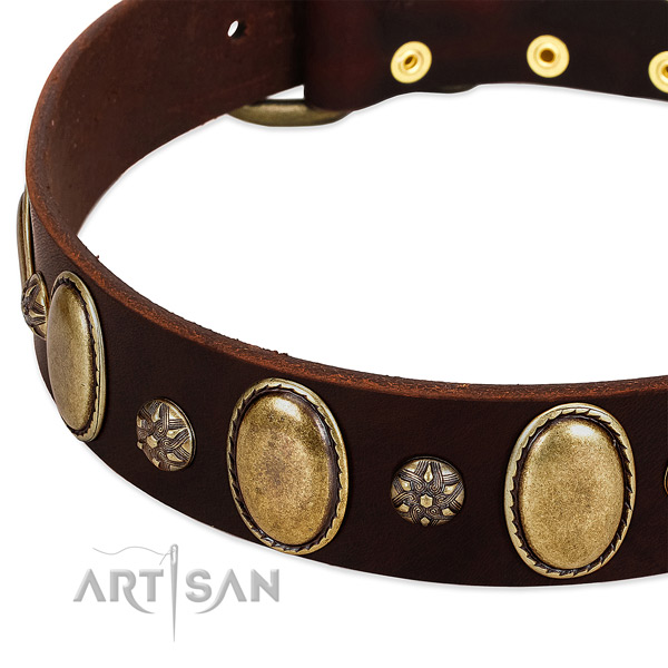 Everyday walking soft to touch full grain natural leather dog collar