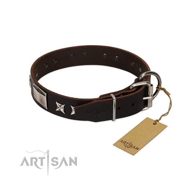 Impressive collar of natural leather for your lovely canine