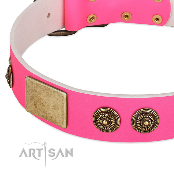 Trendy dog collar handcrafted for your beautiful canine