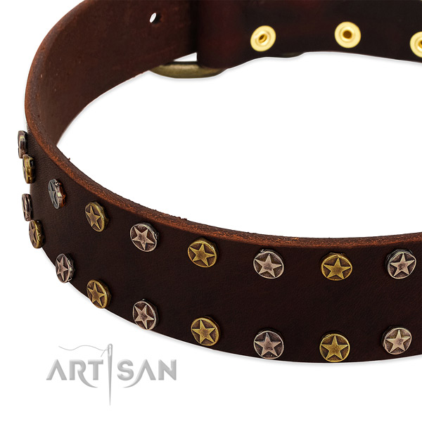 Daily walking full grain genuine leather dog collar with significant decorations