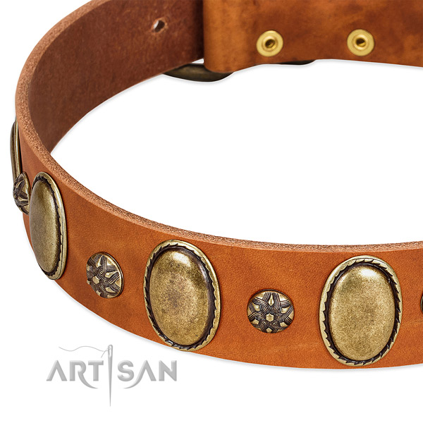Handy use top notch full grain leather dog collar