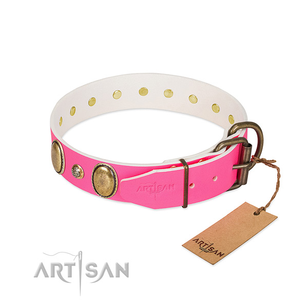 Everyday use top rate natural genuine leather dog collar