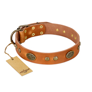 """Sun Beams"" FDT Artisan Tan Leather Sharpei Collar with Decorations"