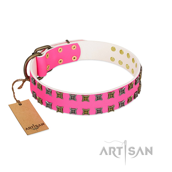 Natural leather collar with stylish decorations for your canine