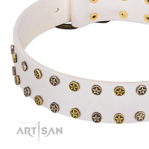 Top notch studs on full grain genuine leather collar for your four-legged friend