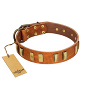 """Olive Slice"" FDT Artisan Tan Leather Sharpei Collar with Engraved and Smooth Plates"