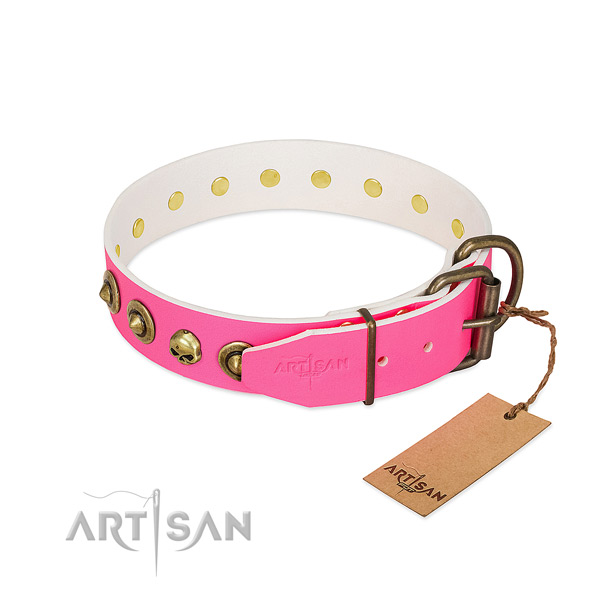 Natural leather collar with significant embellishments for your four-legged friend