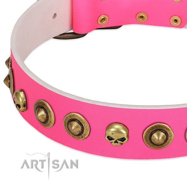 Exceptional adornments on natural leather collar for your dog