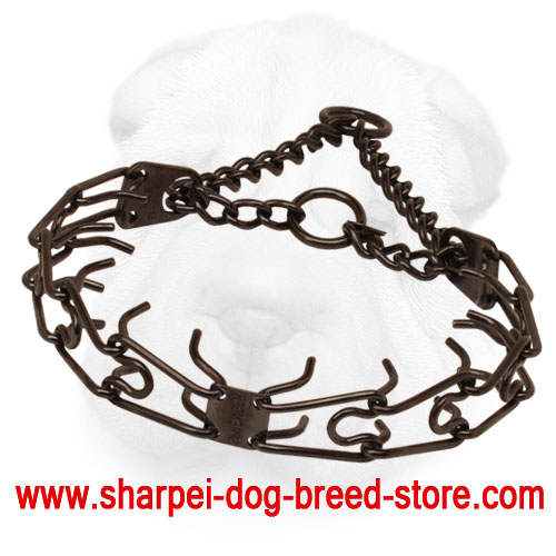 Prong collar of rust resistant black stainless steel for poorly behaved dogs