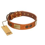 """Bronze Century"" FDT Artisan Tan Leather Sharpei Collar with Plates and Brooches with Cool Ornament"