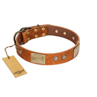 """Ancient Treasures"" FDT Artisan Tan Leather Sharpei Collar with Antiqued Plates and Studs"
