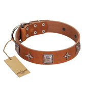 """Lucky Star"" FDT Artisan Tan Leather Sharpei Collar with Silver-Like Embellishments"