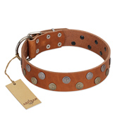 """Ancient Symbol"" Trendy FDT Artisan Tan Leather Sharpei Collar with Silver- and Gold-Like Studs"