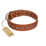 """Little Floret"" Fashionable FDT Artisan Tan Leather Sharpei Collar with Silver-Like Adornments"