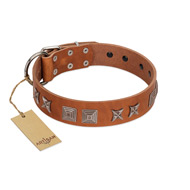 """Antique Figures"" FDT Artisan Tan Leather Sharpei Collar with Silver-like Engraved Plates"