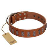 """Silver Century"" Fashionable FDT Artisan Tan Leather Sharpei Collar with Silver-Like Plates"