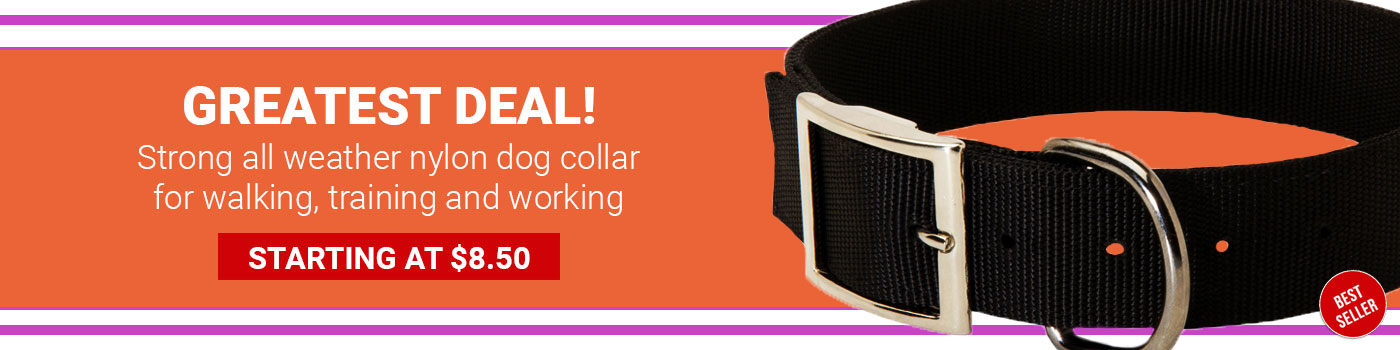 2 Ply Nylon Extra Wide Shar Pei Collar for All-Weather Use